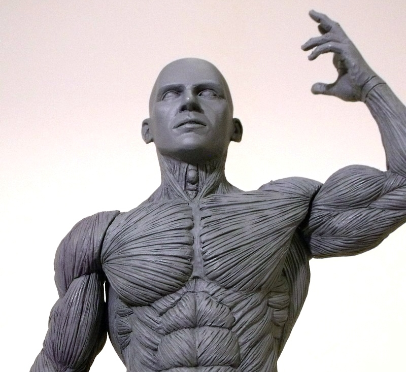 Anatomy model for artists