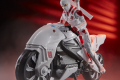 Storm Shadow with Stealth Cycle