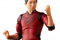 MARVEL LEGENDS SERIES 6-INCH SHANG-CHI AND THE LEGEND OF THE TEN RINGS - Shang-Chi oop7