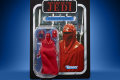 STAR WARS THE VINTAGE COLLECTION 3.75-INCH EMPORER'S ROYAL GUARD Figure - in pck (1)
