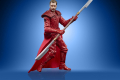 STAR WARS THE VINTAGE COLLECTION 3.75-INCH EMPORER'S ROYAL GUARD Figure - oop (6)