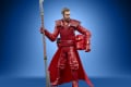 STAR WARS THE VINTAGE COLLECTION 3.75-INCH EMPORER'S ROYAL GUARD Figure - oop (8)