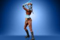 STAR WARS THE VINTAGE COLLECTION 3.75-INCH AAYLA SECURA Figure 8