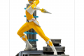 Yellow Ranger BDS-IS_12