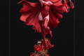 Scarlet Witch-IS_01